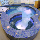 Hydrotherapy Pools 16